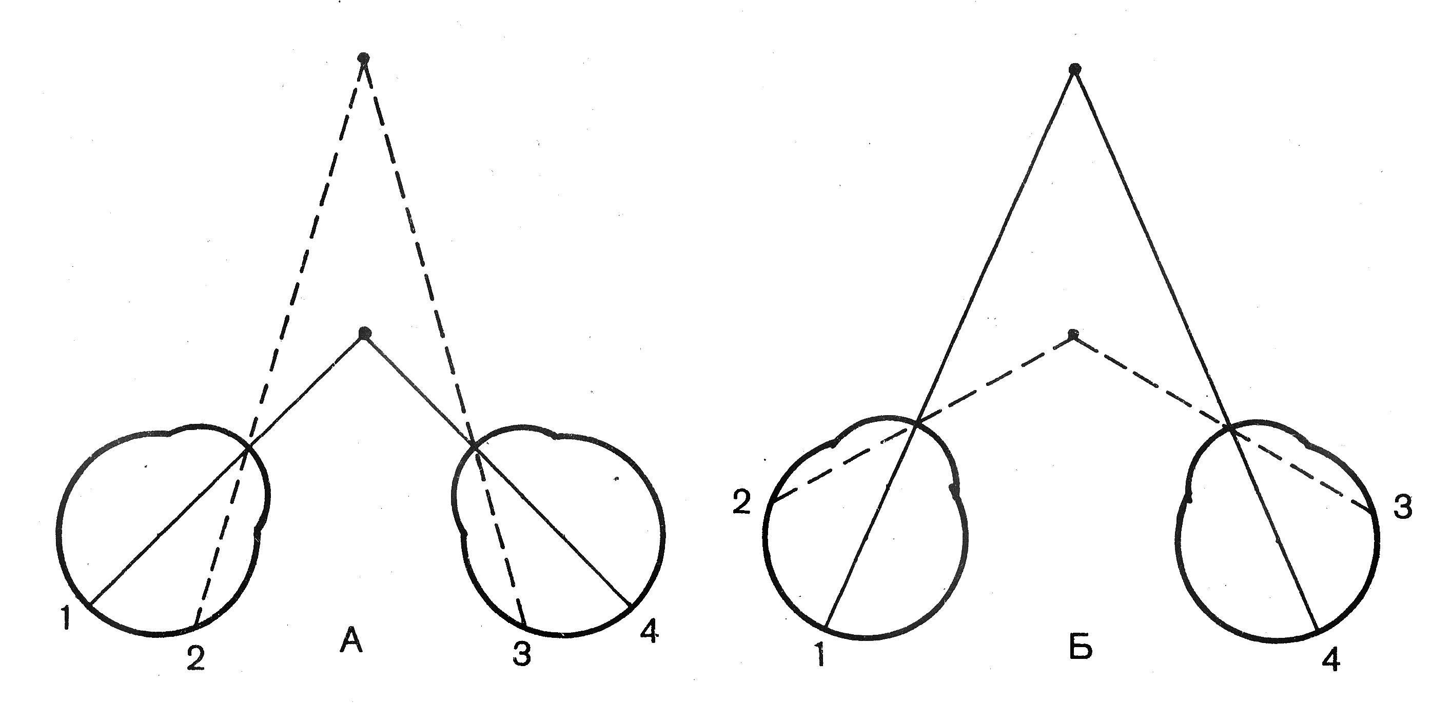 e4e63a1c0 تسهل الرؤية ذات العينين إلى حد كبير إدراك الفضاء وعمق الكائن ، ويسهم في  تحديد شكله وحجمه.